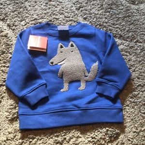 Toddler Boys sweatshirt Hannah Andersson 3T